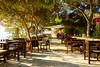 Under the Pine Trees (George Plakides) Tags: restaurant dining tables pine tree konnosbeach ayianapa