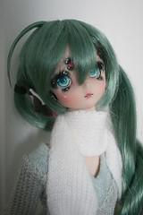 Mikumo Zatsune (shorleckin) Tags: dollfiedream doll anime miku hatsune spider sadol ddh10