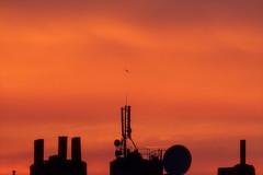 Searching for life (kceuppens) Tags: space silhouette antwerpen antwerp evening avond sky lucht nikond810 nikon d810 nikkor nikkor80400afs 80400 oranje orange extraterrestrial stad city dusk skyline sunset zonsondergang zon sun
