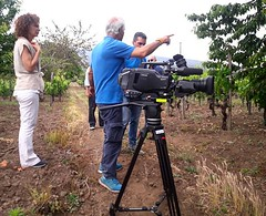 Photo (fischettiwine) Tags: tenuta moscamento air walkingday vineyardvine alberello cherrytree wine etnadoc etna sicily tg television foodandwine tour press