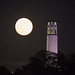 Moon over Coit Tower