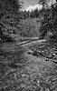 Meandering River (johnscratchley) Tags: blackandwhite landscape nature vancouverisland hdr luminar