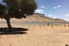 IMG_0987 (Avelino Oliveira) Tags: morocco marrocos vidanomad travel roadtrip iphone