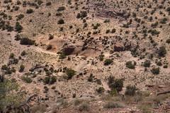 Micro Wave (Chief Bwana) Tags: az arizona pariaplateau vermilioncliffs navajosandstone wave psa104 chiefbwana