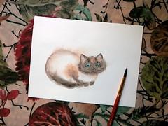cat (tinyteensdolls) Tags: art drawing draw paint painting painteveryday sketch artwork myart watercolor watercolorpainting cat kitty