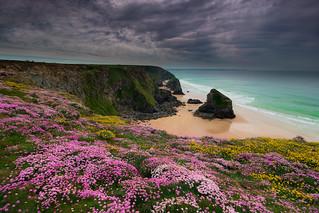 Colour on the cliffs