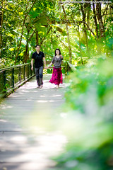 Phu Ping Palace Chiang Mai Thailand Wedding Photography (NET-Photography | Thailand Photographer) Tags: 200 2013 85mm 85mmf14 phupingpalace camera chiangmai couple d3s engagement engagementsession f14 iso iso200 love nature netphotographer netphotography nikon outdoor palace prewedding prenup prenuptial th tha thailand พระตำหนักภูพิงคราชนิเวศน์ photographer photography professional service wedding documentary honeymoon session best postwedding asia asian destination popular thai local