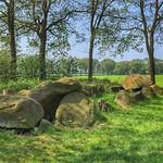 Dolmen / Hunebed D51 - Noord-Sleen, Drenthe, Netherlands - 1165 thumbnail