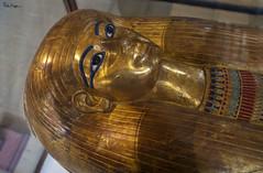 Inner Coffin of Tjuyu (Karnevil) Tags: africa egypt cairo tjuyu thuya thuyu egyptiannoblewoman goldmaskoftjuyu mask mummymask deathmask funerarymaskoftjuyu innercoffin egyptianmuseum museumofegyptianantiquities museumofcairo 1902 bucketlist nikon d610 petekreps