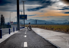 Ciclovia Panamericana -  June 8 2018 (Johnny Edward Bankson) Tags: 23mm bicycle chile colina edward fujifilm fujinon john johnbankson johnedwardbankson johnb otoño photographer ruta5 southamerica xt2 xf23mmf14 autumn bici bicicleta bike ciclovia cloudy fotografia fotografo fotógrafo lowprofile panamericana photographersonflickr photography prime ride sidewalk ©johnbankson