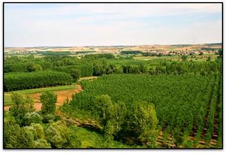 Valle del Esla, Rueda del Almirante (León, España)