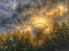 Amazing storm cloud. (Pearce Levrais Photography) Tags: sundown sunset landscape iphone hdr forest tree skyline sky cloud