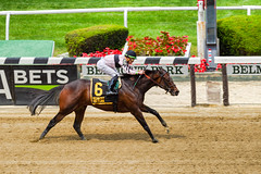 Lewis Bay with Irad Oritz Jr (SouthpawCaptures) Tags: lewis bay belmont park stakes grade iii irad ortiz jr