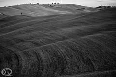 Endless fields (cekuphoto) Tags: pienza sanquiricodorcia tuscany valdorcia cipressi cipressini colline goldenhour hills landscape winter