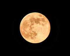flower moon (Joseph Figueiredo) Tags: moon nature sky night full