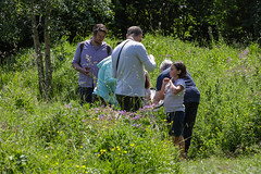 Edinburgh Botanic Gardens BioBlitz 2018 -178 (Philip Gillespie) Tags: • edinburgh royal botanic gardens 2018 big bioblitz bio blitz kids children men women man woman people fun faces smiles water wet insects bugs moths spiders legs arms eyes hats grass trees bushes plants short pool sun sky pond lilly wings park nature colour green blue red yellow orange purple science teach record check house cottage photo photography canon 5dsr rbgenature thebotanics dipping worms birds bigbotanicsbioblitz