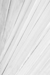 Elm St Parklet #2 (Michael Muraz) Tags: 2017 bw blackwhite canada elmstreet northamerica on ontario toronto world abstract architecture bench building monochrome parklet wood ca