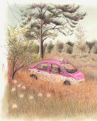 i'm lost (limón celeste) Tags: cdmx taxi rosa dibujo draw pastel pencils derwent mexico mexicano woods bosque illustration ilustracion