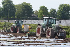 Fendt 930 Vario Tractor with an Amazone Power Harrow and a Fendt 720 Vario Tractor with a Samco System 6 Row Maize Planter (Shane Casey CK25) Tags: fendt 930 vario tractor amazone power harrow 720 samco system 6 row maize planter midleton agco green traktor trekker traktori tracteur trator ciągnik sow sowing set setting drill drilling tillage till tilling plant planting crop crops cereal cereals county cork ireland irish farm farmer farming agri agriculture contractor field ground soil dirt earth dust work working horse horsepower hp pull pulling machine machinery grow growing nikon d7200
