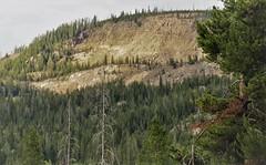 Huckleberry Mountain (lotosleo) Tags: huckleberrymountain bridgertetonnationalforest teton forest wyoming wy rockymountains travel crossamerica2015 outdoor landscape mountainside bluff