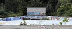 The Last Wave (95wombat) Tags: abandoned decayed rotted vandalized graffiti waterpark mounttom holyoke mass