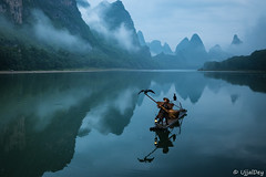 Cormorant fishing ~ EXPLORED #239 (09-Jun-2018) (ujjal dey) Tags: ujjal ujjaldey guilin yangshuo china travel traveler fisherman cormorant landscape mountain river reflection dailylife morning dawn misty cloudy krast fujifilm xe2s fishing net