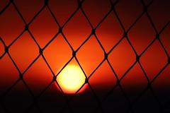 Barred Sun (Sven Bonorden) Tags: sun sunset sonne gitter netz mesh grid rot red sonnenuntergang gelb yellow dänemark denmark kattegat ostsee