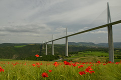 Viaduc de Millau (Michel Seguret Thanks for 12,2 M views !!!) Tags: france nature occitanie michelseguret nikon d800 pro aveyron millau viaduc viaduct fleur fleurs flower flowers coquelicots poppies champ field construction pont bridge printemps spring