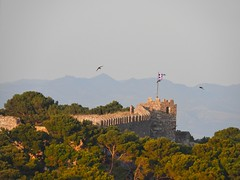The castle and the swallows (panoskaralis) Tags: castle ancient ancientgreece trees pine green swallow greekflag flag lesvos lesvosisland mytilene greece greek h hellenic outdoor landscape nikon nikoncoolpixb700