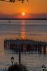 DSG_3109.jpg (alfiow) Tags: derelict pier sunset totland