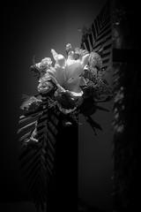 Flower Arrangement #bnw (Henrybakery) Tags: lightandshadow flowerarrangement ikebana bouquet blackandwhite photography bnw flower