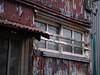 toilet window (kasa51) Tags: building house window galvanizedironplate corrugatedsheet rusty ruined yokohama japan トイレ 御不浄 窓 トタン波板 aiiey 路地 便所窓
