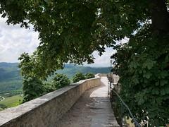 20180613-1039-p1010632 (Stefan Hundhammer) Tags: istrien istria kroatien croatia istrientour2018 panasonicgx80 panasonicgx85 panasonicleica15f17 mftprimes