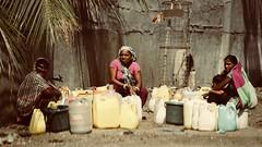Save water, save earth (Rahul Gaywala) Tags: dumas beach sea surat gujarat india candid casual life people action camel plane boy girl