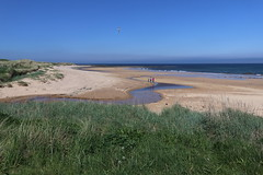 St Combs Beach_may 18_650 (Alan Longmuir.) Tags: stcombsbeach grampian aberdeenshire stcombs