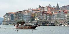 Porto, Portugal (cpcmollet) Tags: porto oporto portugal panorama view urban city duero douro river boat barco architecture arquitectura europe europa