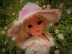 White roses and Sindy (CooperSky) Tags: sindy regency girl 1981