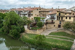 Río Arga, Puente la Reina