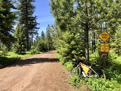 Troy - Shiloh Ranch Loop Ride (Doug Goodenough) Tags: bicycle bike cycle pedals spokes 29 plus surly ecr spring 2018 18 may forest canyons grande ronde river troy oregon shiloh ranch drg531p drg531 drg53118p gravel grinding drg53118pshiloh