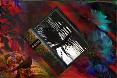 El cisne (seguicollar) Tags: imagencreativa photomanipulación art arte artecreativo artedigital virginiaseguí libro flores rocas pájaros cisne agua red negro estanque sombras reflejos