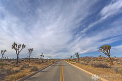 Road Trip (Brian Knott Photography) Tags: road highway street roadway desert sky sunrise sunset afternoon joshuatree tree trees joshuatrees nationalpark joshuatreenationalpark california clouds cloudy diminishing openhighway openroad valley