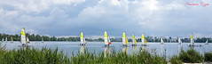 Bordeaux voiliers sur le lac (Ezzo33) Tags: france gironde nouvelleaquitaine bordeaux ezzo33 nammour ezzat ville paysage lac voiliers s7