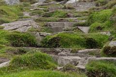 Up the steps (Evoljo) Tags: countydonegal ireland steps grass green climb walk nikon d500 rocks slieveleaguecliffs