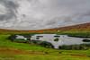 In the crater of Rano Raraku / В кратере Рано Рараку (Vladimir Zhdanov) Tags: travel chile polynesia rapanui easterisland landscape sky cloud volcano field grass ranoraraku lake water wave