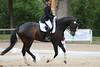 _MG_7854 (dreiwn) Tags: dressage dressur dressuur pferd reitturnier turnierreiten pferdesport horse horseback horseriding equestrian reitverein dressurprüfung kandare doublebridle reiten pferde reitplatz ridingarena