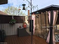 Judy Davis - Feeder Station (2) (WBU Barrie) Tags: wbubarrie wildbirdsunlimited wildlife birds birdfeeding barrie birdfeeders birding backyardbird simcoecounty feeder