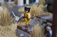 Come on out Bub! (Ben Cossy) Tags: lego wolverine logan hugh jackman xmen mcu marvel comic comicbook adamantium moc afol tfol bush desert
