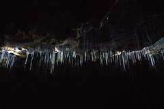 Glow Worm Caves (michael spear hawkins) Tags: lenstagger nz newzealand a7riii adaptedglass adaptedlens caves northisland sony sonymirrorless spellbound travel vintageglassvintagelens waitomo