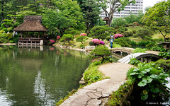P5292253-Edit.jpg (marius.vochin) Tags: vegetation googlevision landscape asia nature water botanicalgarden pond shukkeien plant hiroshima park tree travel green landmark garden trip watercourse reflection flower japan labels hiroshimashi hiroshimaken jp