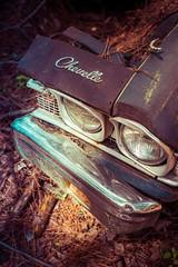 Mute (Wayne Stadler Photography) Tags: abandoned preserved junkyard georgia classic automotive derelict overgrown vehiclesrust rusty retro vintage oldcarcity rustographer rustography white